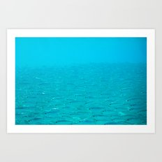 Fish School on the Horizion Art Print