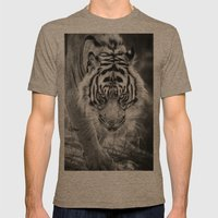Tiger Tiger Mens Fitted Tee Tri-Coffee SMALL
