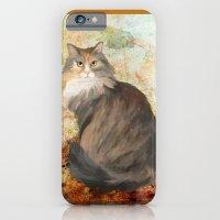 Maine coon cat iPhone 6 Slim Case