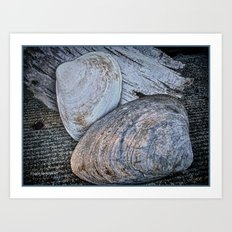 Driftwood and Sea Shells Art Print
