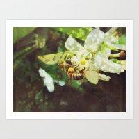 Honey Bee: Emerald Art Print