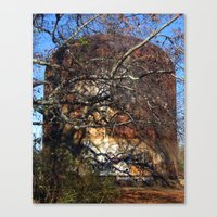 Rusted And Forgotten Canvas Print