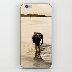 Dirty Fish Bait iPhone & iPod Skin