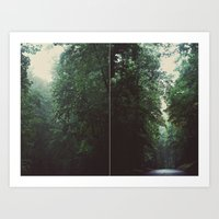 The Forest - Scene One Art Print