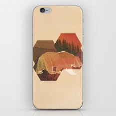 POLYBEAR iPhone & iPod Skin