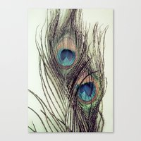 Peacock Feathers II Canvas Print
