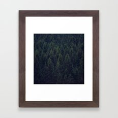Deep In The Woods Framed Art Print