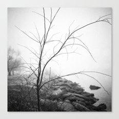 Fog Canvas Print