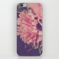 fresh pink iPhone & iPod Skin