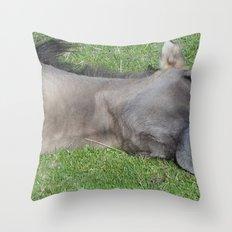 Grinning Horse Throw Pillow