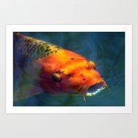 Red Koi 085 Art Print