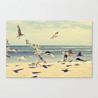 Seagulls Over Westhampton Beach Canvas Print