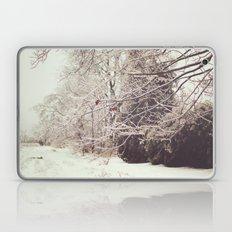 Ice Storm Laptop & iPad Skin