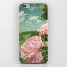 Boho Vibe iPhone & iPod Skin