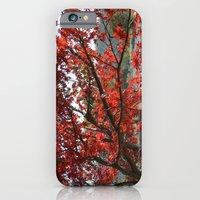 Japanese Maple iPhone 6 Slim Case