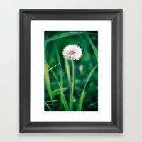 Fluffy Flower Framed Art Print