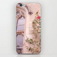 Rose Window iPhone & iPod Skin
