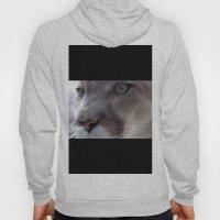 Cougar Hoody
