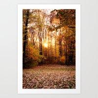 An Autumn Afternoon Art Print