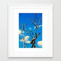 Tree Of Floyd Framed Art Print