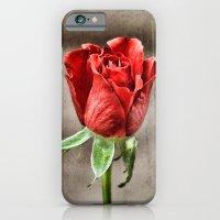 Red Rose Red iPhone 6 Slim Case