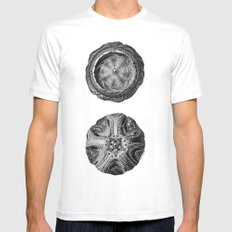 Mystical Orbs White SMALL Mens Fitted Tee