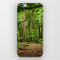 Glade of my Dreams  iPhone & iPod Skin