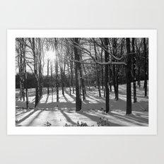 Sunburst Forest Art Print