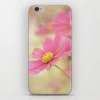 Pretty Pinks iPhone & iPod Skin