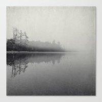 gray morning Canvas Print