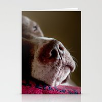 Dog Stationery Cards