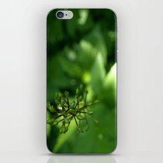 Never Loose Focus. iPhone & iPod Skin