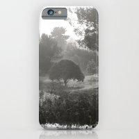 Foggy Path iPhone 6 Slim Case