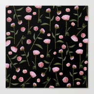 Canvas Print featuring Peonies On Black by Lisa Argyropoulos