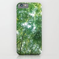 Forest 012 iPhone 6 Slim Case
