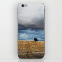 Lonely Tree Waiting For … iPhone & iPod Skin