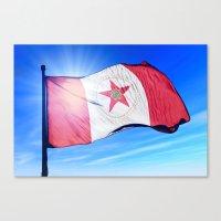 Birmingham, Alabama (USA), flag waving on the wind Canvas Print