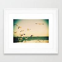 Gulls Series 1 Framed Art Print