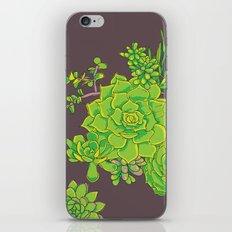 Succulent Pattern iPhone & iPod Skin