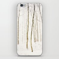 Snowy Trail iPhone & iPod Skin