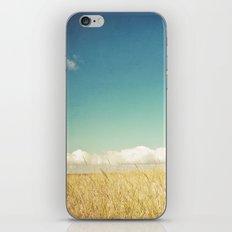 Calm iPhone & iPod Skin