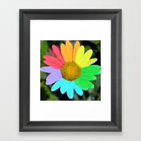 Colorful Daisy Framed Art Print