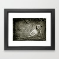 Dog Play Framed Art Print