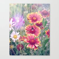 Multi Coloured Flowers with Bee Canvas Print
