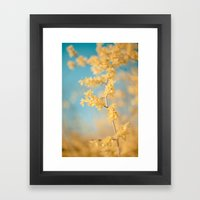 I Dream In Yellow Framed Art Print