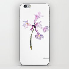 Flowers of the tree *Handroanthus sp* iPhone & iPod Skin