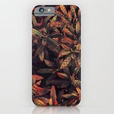 leaves evolved 5 Slim Case iPhone 6s