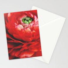 Frilly Stationery Cards