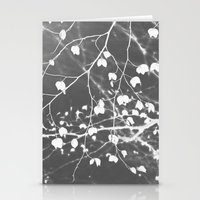 Negative 3 Stationery Cards