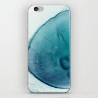 Aurelia iPhone & iPod Skin